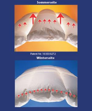 Climasphere der ersten und einzigen Vierjahreszeitendecke in einer Decke
