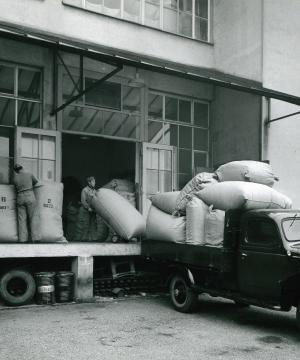 Wiederaufbau der Bettfedernfabrik in Lörrach
